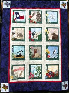I love this Texas quilt!