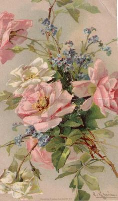 Vintage Images: Catherine Klein postcards This would totally match my birdie picture Mais Catherine Klein, Art Floral, Floral Prints, Vintage Postcards, Vintage Images, Vintage Art, Botanical Art, Botanical Illustration, Decoupage