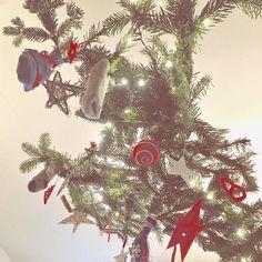 Weihnachten kann losgehen. Der fliegende Advents-Deckenkalender hängt. Jedenfalls für die Kinder. Mehr ist eben mehr! Was war denn bei euch im ersten Türchen? Hier gab's Stifte.. ui!  #berlin #adventskalender #tannenzweige #Advent #Weihnachten #igersberlin #diy #selbstgemacht #fb #daddyblogger #selfmade