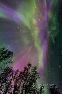 PHOTOS: Spellbinding Colors of Northern Lights Astound Alaska Photographer - Outdoor - AccuWeather.com
