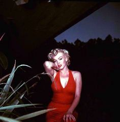 Marilyn Monroe by Ted Baron dressed in red