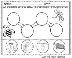 Just Wild About Teaching: Bopping for Butterflies - Butterfly Unit. Enter to win a copy!