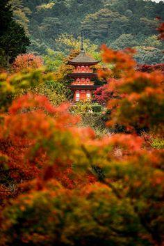 Kyoto by Siva Subramanian Vasanth