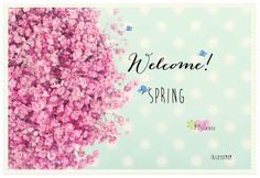 Welcome, Spring! <3 Would love for you to join us on Joy of Mom! <3 https://www.facebook.com/joyofmom  #springishere #seasons #joyofmom