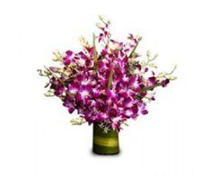 Arrangement of 12 purple orchidsin a glass vase