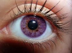natural violet eyes - Google Search