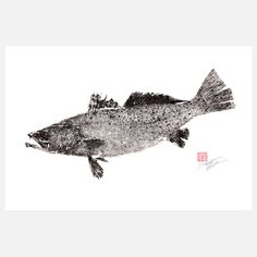 Speckled Sea Trout 18x12, $29, now featured on Fab.