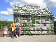 """A temporary house made from a pipe frame and vegetable crates had living walls and a living roof covered with fresh vegetables that could be directly harvested from this """"greenhouse."""""""