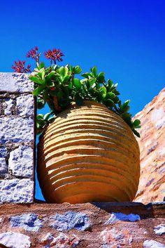 Large-terracotta-pots.jpg-475x356   CASA   Pinterest   Large ...