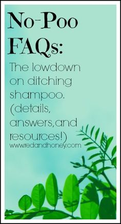 Want to ditch shampoo? Read this! No-Poo FAQs from redandhoney.com