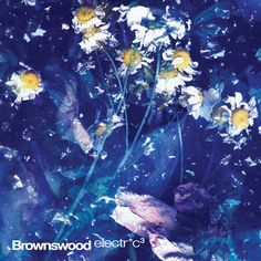 Brownswood Electric 3 (2012) - Gilles Peterson