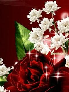 Download Animated 240x320 «цветы» Cell Phone Wallpaper. Category: Flowers
