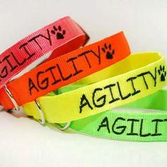Neonové obojky s vyšitím od Blackberry | Neon collars with embroidery by Blackberry #embroidery #neon #collar #agility #colors #dog #dog_sport #pet #pes #obojek #vysivka