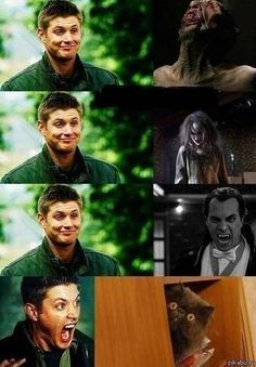 Supernatural... when Dean was afraid of EVERYTHING, especially a cat.  Best.  Episode. Ever.