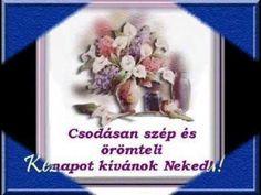 Jó reggelt kívánok ébredj vidáman!A felkelő nap háza! - YouTube Good Morning, Humor, Flowers, Youtube, Buen Dia, Bonjour, Humour, Funny Photos, Funny Humor