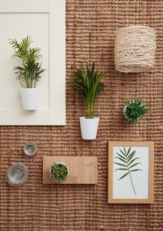 Nature-inspired designs: Pair sustainable, eco materials with clusters of small potted plants in white vases for a natural, pared back look. (Photo: B&Q)  #moodboard #sustainable #greenery #trends