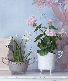 We have been trying to source an alternative to our popular flower urn and found these lovely alternatives As you can see they re great as cachepots
