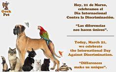 """Hoy 21 de Marzo celebramos el Día Internacional Contra la Discriminación. """"Las diferencias nos hacen únicos"""""""