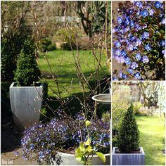 Spring patio / Kevätpatio