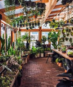 Someday, my greenhouse will look like this and I will truly be happy!