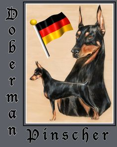 12x15Doberman PinscherGlass cutting board by TheCopperMare on Etsy