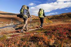 Trek or Ski Kungsleden (The Kings Trail), Sweden - Bucket List Dream from TripBucket