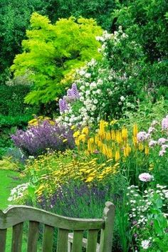 How to plant low cost, low upkeep 'forever flowering flowerbeds'....