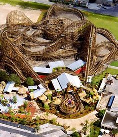 Gwazi: Busch Gardens Tampa