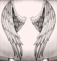 Angelic wings sketch