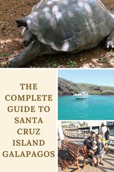 The complete guide to Santa Cruz Island Galapagos - everything you need to know about Santa Cruz, Puerto Ayora and all the day trips from the island. Explore the Galapagos! #travel #ecuador #galapagos #santacruz