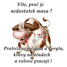 Bratislava, Adult Humor, Funny People, Plexus Products, Motto, We Heart It, Funny Jokes, Haha, Motivation