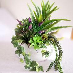Sukulenty i szafirki w białej  misie nr. 180 Flowers, Plants, Google, Atelier, Plant, Royal Icing Flowers, Flower, Florals, Floral