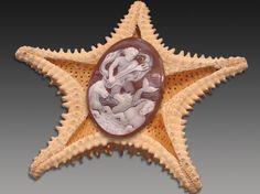 Cameo di corallo