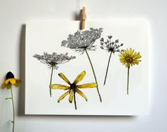 Meadow Flowers Drawing Card by HelloSprout on Etsy,