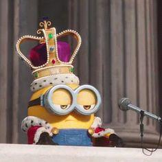 po ckam per tdesh tjtr o jet Minion Wallpaper Iphone, Cute Emoji Wallpaper, Disney Wallpaper, Minion Gif, Minion Movie, Minions Animation, Minions Quotes, Minion Sayings, Funny Minion Pictures