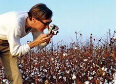 William Eggleston | American photographer | Britannica.com