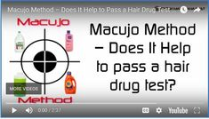 Macujo Method – Does It Help to Pass a Hair Drug Test in Update!