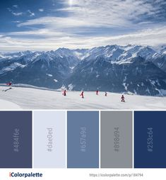 Color Palette ideas from 693 Winter Images Colour Schemes, Color Combos, Winter Images, Find Color, Colour Board, Paint Chips, Colour Inspiration, Winter Colors, Color Pallets