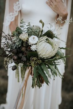 The Big Statement Protea is definitely on-trend for We love this white version with paper daisies, gumnuts and amaranthus. Bride Bouquets, Flower Bouquet Wedding, Floral Wedding, Protea Bouquet, Boquet, Our Wedding, Dream Wedding, Wedding Cake, Floral Arrangements