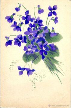 ramo de violetas dibujo - Buscar con Google