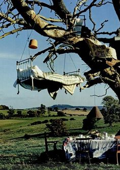 bed in a tree picture | UNDERGROUND & OVERRATED: THE SECRET LIFE OF TREES - Tim Walker
