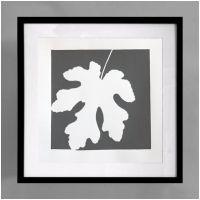 Fig Gray Framed Print - Black Frame