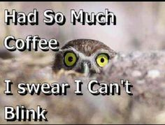 Coffee Humor | Too much Coffee...???...Humor... | All things funny | Pinterest