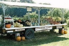 Best Farm Stand Display Ideas For Alternative Beautiful Display Ideas - adney news Farmers Market Display, Market Displays, Food Displays, Vegetable Stand, Produce Stand, Farm Business, Farm Store, Fruit Stands, Plant Stands