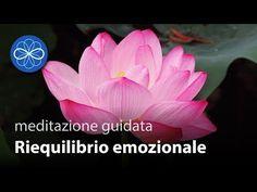 Riequilibrio Emozionale - meditazione guidata in italiano per la guarigione delle emozioni - YouTube Reiki Quotes, Cogito Ergo Sum, Reiki Energy, Osho, Ayurveda, Problem Solving, Decoupage, Relax, Psicologia