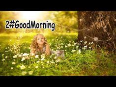 6#Buongiorno ( Un pensiero fiorito...) - YouTube