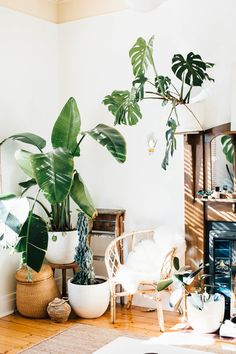 Photographer Crush: Alexandra Strong   Happy Interior Blog