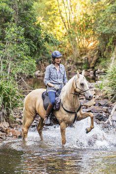 Séjour à cheval au pays des koalas #australie #chevaldaventure