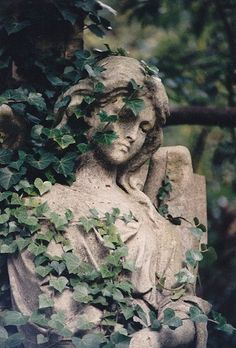 Angel wreathed in ivy, Highgate Cemetery East. One of my own photos, scanned.