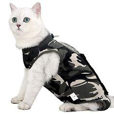 Les 20+ meilleures images de vetement pour chat en 2020